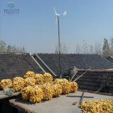 De Generator van de Macht van de wind 600W 24V met het Controlemechanisme van de Last