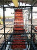 2-20TPH 산업 토마토 펄프 토마토 퓌레 토마토 주스 생산 기계장치