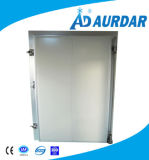 El panel de la conservación en cámara frigorífica de la puerta deslizante de la cámara fría