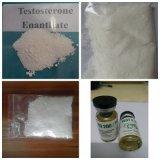 Тестостерон Enanthate эстера больших жидкостей масла серий Injectable законченный длинний