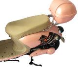 """""""trotinette""""s elétricos do Moped da mobilidade 500W"""