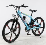 En15914 Hot Sales 250W Full Suspension Myatu Ebike