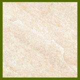 De ceramische Tegels van de Vloer