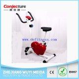 Bicicleta de exercício magnética da resistência da HOME 8 da aptidão