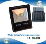 Yaye 18 Spitzenverkaufs-neuester Typ Flut-des Licht-/100W LED Garten-Licht der Ce/RoHS Zustimmungs-100W LED Tunnel-der Licht-100W LED