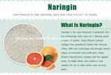 Pampelmuse-Startwert- für Zufallsgeneratorauszug des Naringin-98% natürlicher