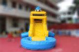 La diapositiva de agua inflable del patio trasero del delfín para el agua estaciona (CHSL437)