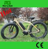 호화스러운 중앙 모터 250W 뚱뚱한 타이어 En15194 전기 자전거