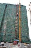 Élévateur évalué de grue de construction de capacité de charge d'installation