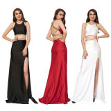 Deluxe Backless Sexy Fashion Lady Dress