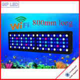 Het Chinese LEIDENE van het Spectrum van de Controle van WiFi van de Fabriek 330W Volledige Licht van het Aquarium