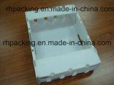 Cadre recyclable de pliage de cartons de fruit de Corflute de polypropylène