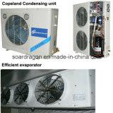 Chambre froide en aluminium de la capacité 30m3
