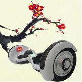 全体的で熱い10inch車輪のBluetoothの電気永続的なスクーター