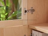 Biblioteca de madeira moderna da laca do espaço livre do folheado do vidoeiro com portas de vidro (AD-FY-N705C-SJ)