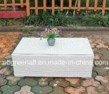 Mobilia esterna stabilita del rattan del sofà del rattan del PE (9059S)