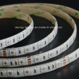 Indicatore luminoso di striscia flessibile di RGB SMD5050-WU60 con CE RoHS