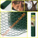 Huhn-Maschendraht/sechseckiger Maschendraht/Geflügel greifen ineinander
