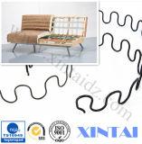 Спиральная пружина нержавеющей стали спиральной пружины изготовленный на заказ