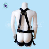 Fall Protection Safety Harness mit Waist Belt (EW0113H)