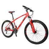 中国の古典的な様式のシールのペンキ山の自転車Bicicleta Deモンタナ