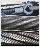 Wire en acier avec Ferrules (CZ-W36)