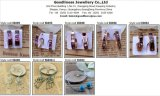 方法デザインイヤリング、中心の宝石類のイヤリングE6708