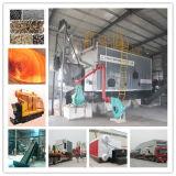 2ton/4ton/6ton/8ton/10ton/12ton/15ton/20ton biomassa In brand gestoken Stoomketel met de Prijs van de Rooster