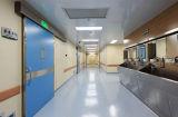 Много красят отборную декоративную и противобактериологическую панель стены винила