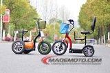 3 عجلات ذكيّ صرة محرك كثّ مكشوف [سكوتر] رخيصة كهربائيّة [إس5016] على عمليّة بيع
