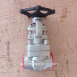 API602 forjou a válvula de porta do NPT da extremidade de linha do aço inoxidável F316L