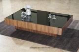 Glace estampée par noir de Tableau pour des meubles de salle de séjour