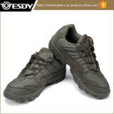 Il militare di cuoio di alta qualità calza i caricamenti del sistema tattici all'ingrosso della scarpa da tennis