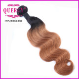 A onda Omber do corpo colore o cabelo humano de trama do cabelo brasileiro do Virgin de Remy