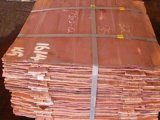 Catodo Copper con Highquality 99.99%Min