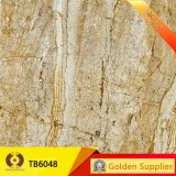 建築材料の磨かれたタイル張りの床のタイル(TB6044)
