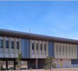 Kundenspezifischer aufbauender Fassade-Dekoration-Aluminiumbienenwabe-WandPanelling