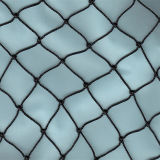 China Factory Zhuoda HDPE Bird Netting para venda