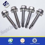 EPDM com Zinc Finsished Self Drilling Screw
