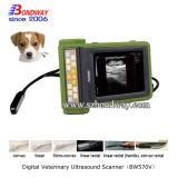 獣医の製品牛妊娠検査の超音波