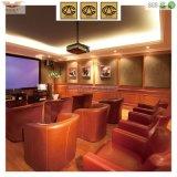 Présidence moderne de sofa de loisirs de meubles de Hongye