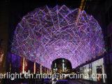 Navidad LED cortina de luz para la decoración