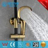 Goden de lujo y ducha moderna negra fijados (BM-60024KG)