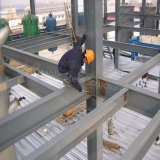 Edificio Pre-Dirigido de la estructura de acero con la certificación del Ce