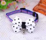 Personnaliser la laisse en nylon de colliers d'animal familier d'unité centrale de lacet de Bowtie de colliers de chat