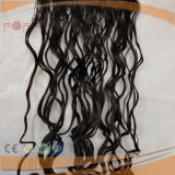100% Menschenhaar Remy Haar, das, Haar wellenförmig, Haar Exntension spinnt