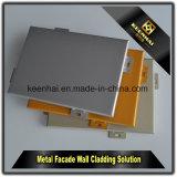 Panneau en aluminium enduit personnalisé par couleur moderne de la construction PVDF pour le mur extérieur