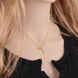 De nieuwe Halsband van de Diamant van het Roestvrij staal van de Juwelen van de Manier Hart Gevormde