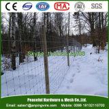 Clôture fixe de frontière de sécurité de cerfs communs de noeud/fil de prairie/compensation de bétail