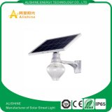 Produtos de venda superiores feitos dentro na luz solar do jardim de China 9W 12W, luz ao ar livre solar